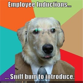 Employee Inductions...  ... Sniff bum to introduce.