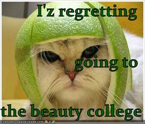 I'z regretting  going to the beauty college