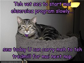 Teh vet sez to start mai eksersiez program slowly...