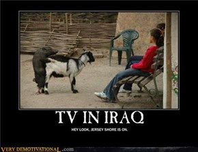 TV IN IRAQ