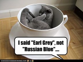 Earl Grey, not Russian Blue...