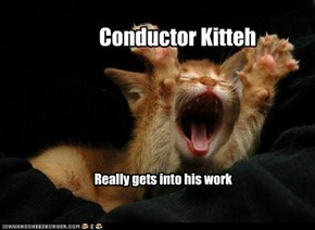Conductor Kitteh
