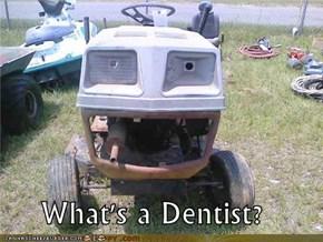 What's a Dentist?