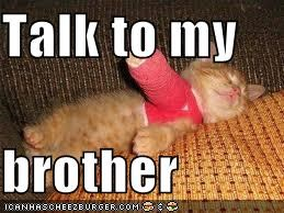 Talk to my   brother