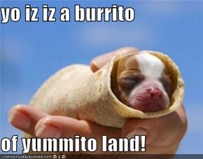 yo iz iz a burrito  of yummito land!