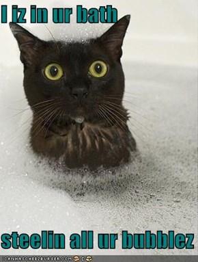 I iz in ur bath  steelin all ur bubblez