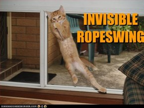 INVISIBLE  ROPESWING