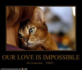 OUR LOVE IS IMPOSSIBLE