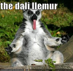 the dali llemur