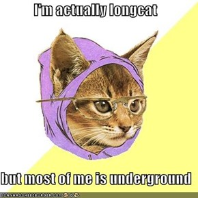 I'm actually longcat  but most of me is underground