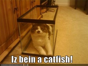 Iz bein a catfish!