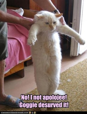 No! I not apolojee! Goggie desurved it!