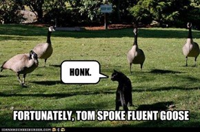 FORTUNATELY, TOM SPOKE FLUENT GOOSE