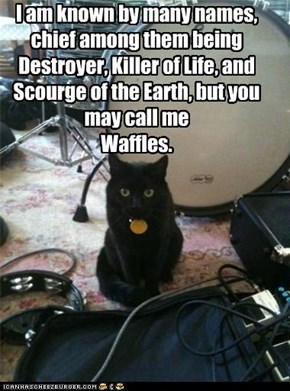 I am known by many names, chief among them being Destroyer, Killer of Life, and Scourge of the Earth, but you may call me  Waffles.