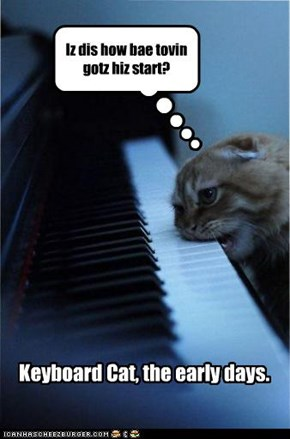 Keyboard Cat, The Early Days