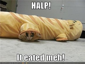 HALP!  It eated meh!