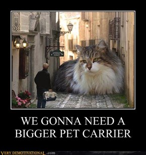 WE GONNA NEED A BIGGER PET CARRIER