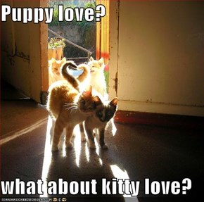 Puppy love?  what about kitty love?