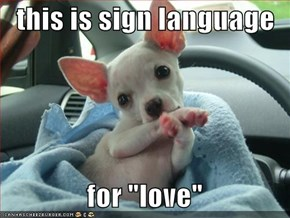 "this is sign language    for ""love"""