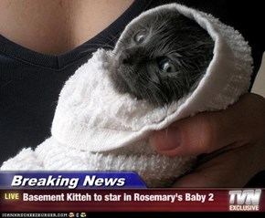 Breaking News - Basement Kitteh to star in Rosemary's Baby 2