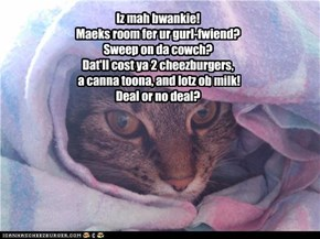 Iz mah bwankie! Maeks room fer ur gurl-fwiend?  Sweep on da cowch? Dat'll cost ya 2 cheezburgers,  a canna toona, and lotz ob milk! Deal or no deal?