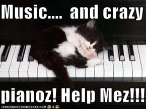 Music....  and crazy  pianoz! Help Mez!!!