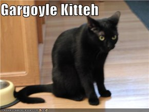 Gargoyle Kitteh