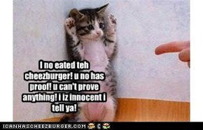 I no eated teh cheezburger! u no has proof! u can't prove anything! i iz innocent i tell ya!