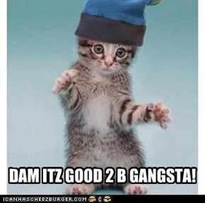 DAM ITZ GOOD 2 B GANGSTA!