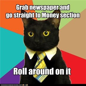 Business Cat: Grab Newspaper
