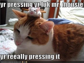 yr pressing yr luk mr. mousie  yr reeally pressing it