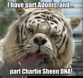 I have part Adonis, and...