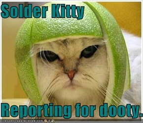 Solder Kitty  Reporting for dooty.