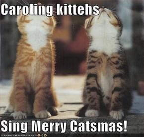Caroling kittehs  Sing Merry Catsmas!