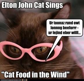 Elton John Cat Sings