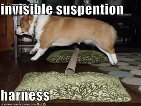 invisible suspention  harness