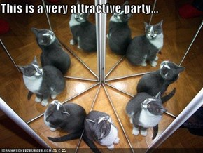 This is a very attractive party...