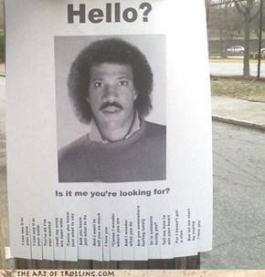 IRL Troll: Hello?