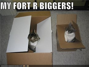 MY FORT R BIGGERS!