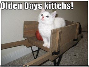 Olden Days kittehs!