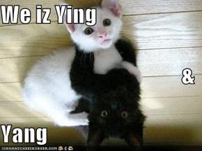 We iz Ying & Yang