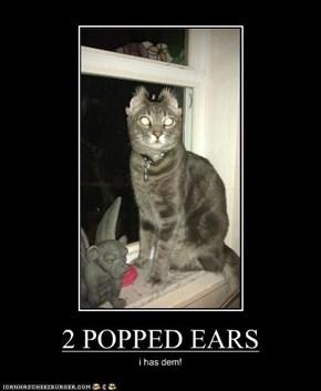 2 POPPED EARS