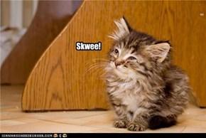 Skwee!