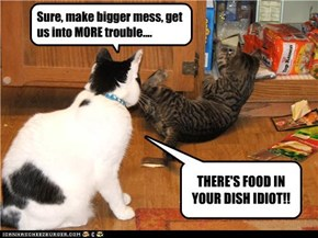 Sure, make bigger mess, get us into MORE trouble....