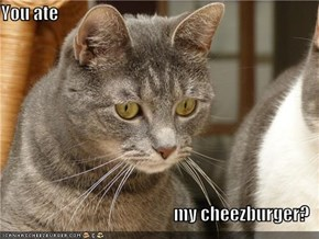 You ate  my cheezburger?