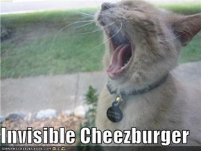 Invisible Cheezburger