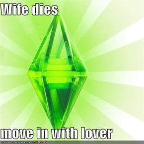 Wife dies  move in with lover