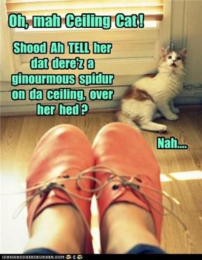 Oh,  mah  Ceiling  Cat !