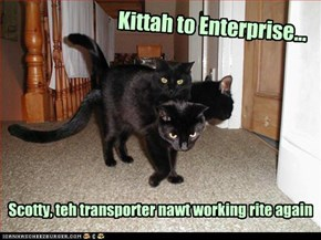Kittah to Enterprise. Scotty, teh transporter nawt working rite again.