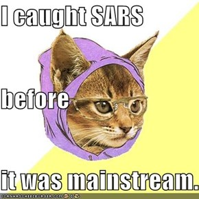 I caught SARS before it was mainstream.